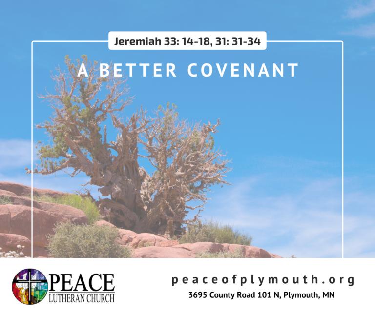 Jeremiah 33 14-18, 31 31-34